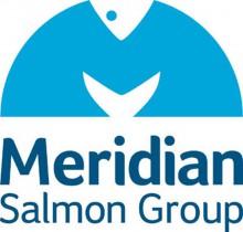 Meridian logo for web news