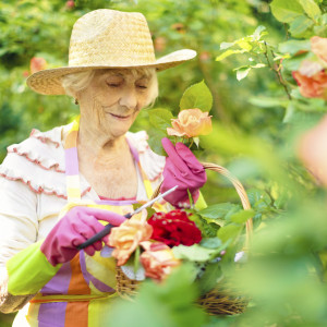 Senior woman gardening at Bupa care home