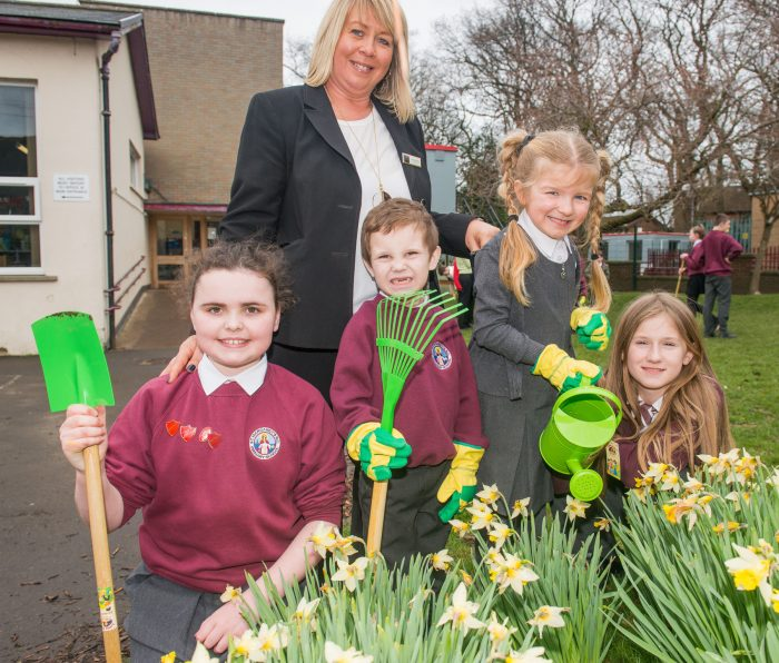 A photo of 3 young girls and a young boy and their teacher posing in front of daffodils with gardening equipment