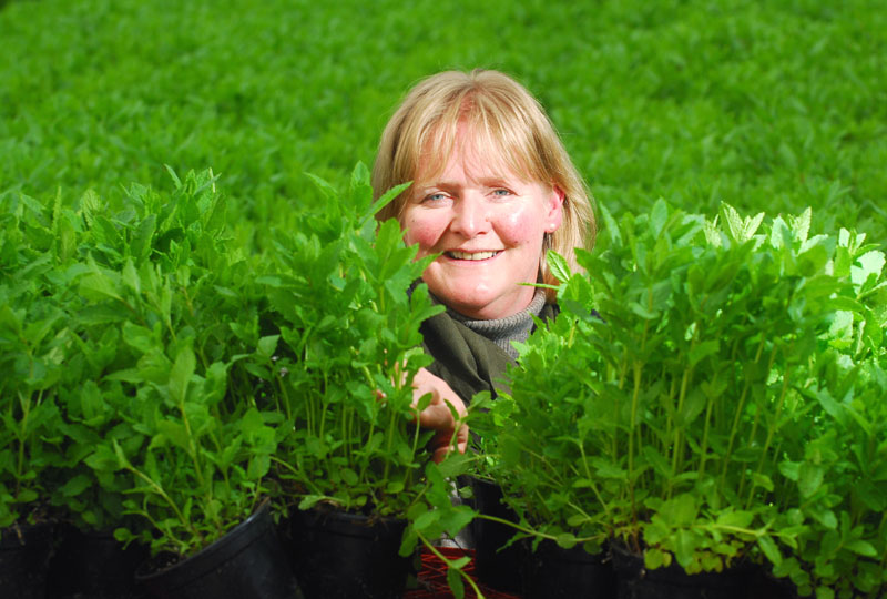 Kathleen Sutherland, Commercial Manager at Scot Herbs in Dundee, captured in food and drink PR photography