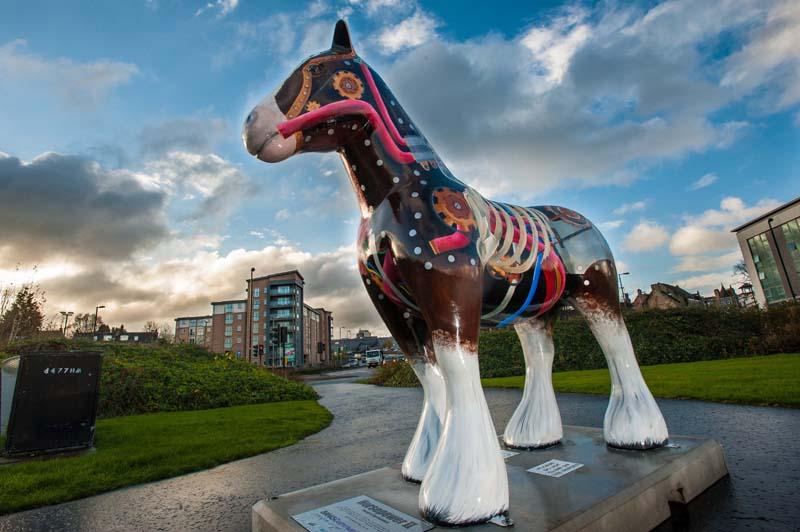 Banks Hamilton horses