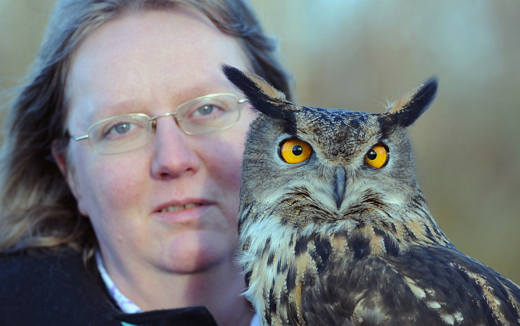 Ollie the Eagle Owl and handler - Eagle Couriers