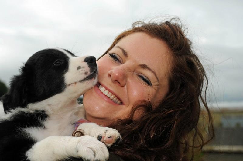 PR photo of sheepdog puppy for wind farm company