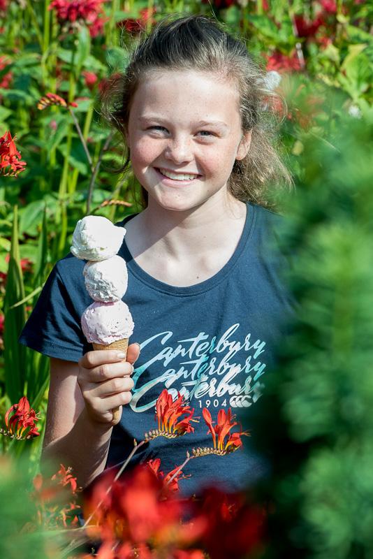 Everything's coming up roses for ice cream lovers