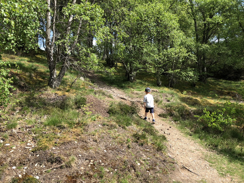 Charity PR photography, Spring Path Days, boys playing outside enjoying nature, Paths For All.